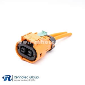 HVIL Cable Plastic 2Pin Plug 23A 2.8mm 4mm² Straight A Key 0.1m Cable